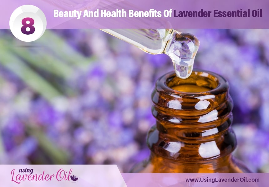 lavender oil medicinal uses