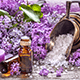 8 Reasons To Use Lavender Essential Oil